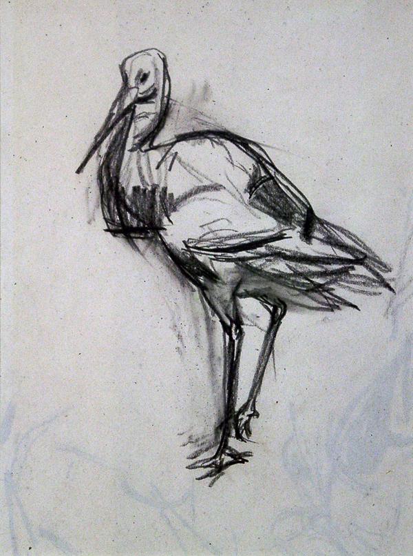 Crawhall, Joseph Stork