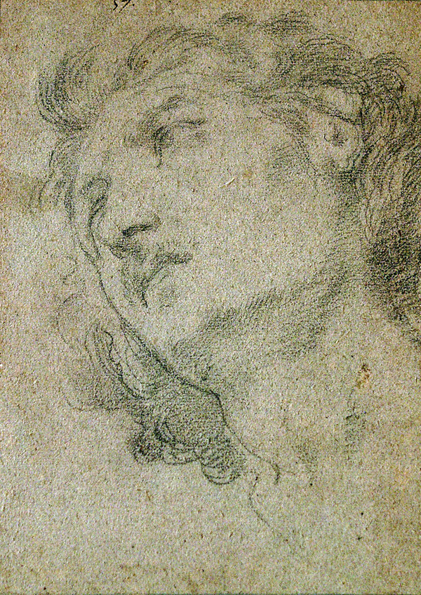 Domenichino (follower of) Head of Young Man Looking Upwards