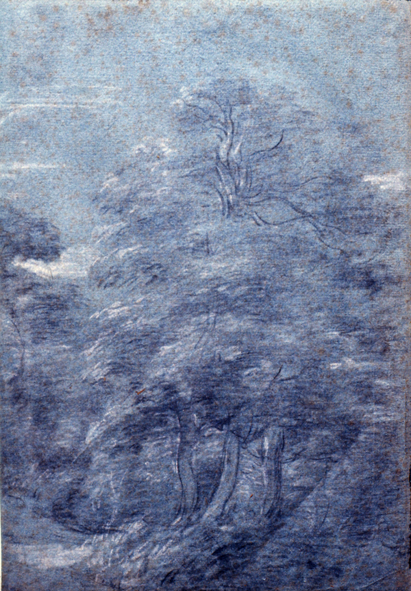 Gainsborough, Thomas (Circle of) Beech Trees