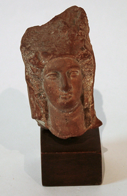 Unknown Terracotta Head