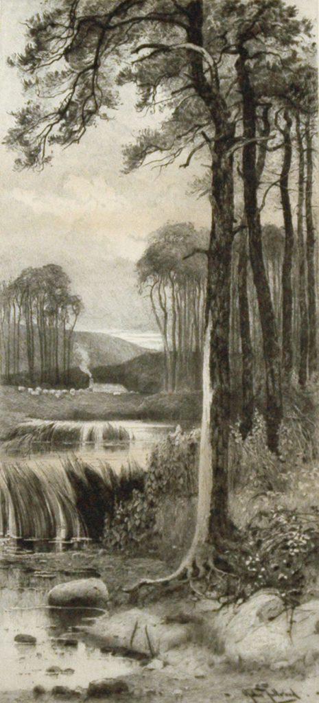 Fullwood, John Spruce Trees
