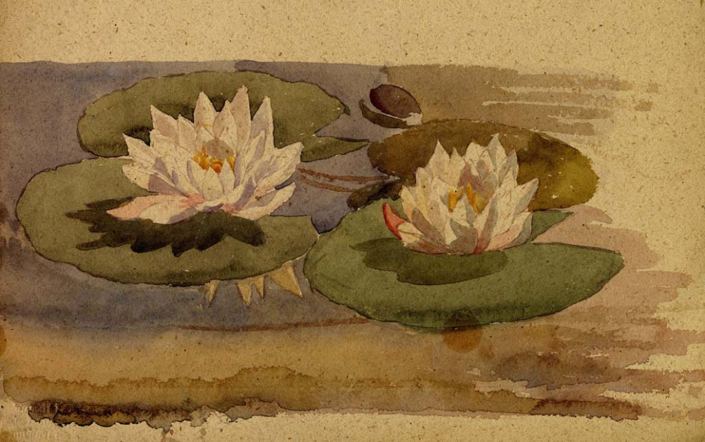 Flint, E. M. Untitled (Water Lilies)