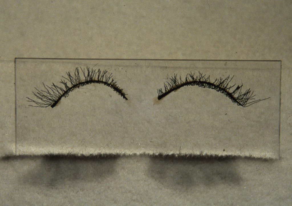 LeMoine, Elizabeth False eyelashes