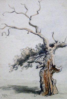 Ward, James An Ancient Oak