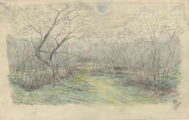 Starkey, H.J. Rough Wood